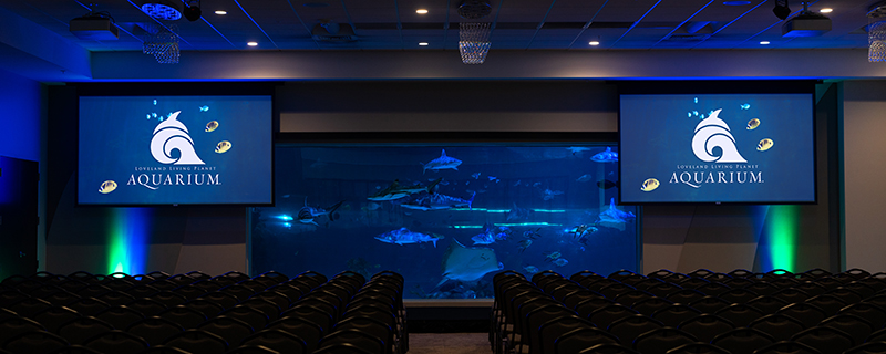 Large ballroom venue with view of sharks.