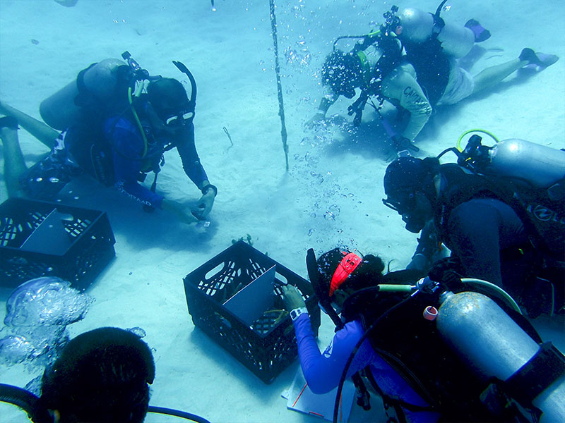 Divers gathered around crate on sea floor
